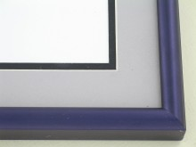 metal Custom Picture Frame Sku: 89-306  Wild Iris