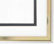 metal Custom Picture Frame Sku: N37-188  Profile 37 Gold Medal